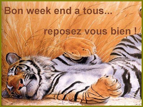 """Résultat de recherche d'images pour """"bon week end les amis"""""""
